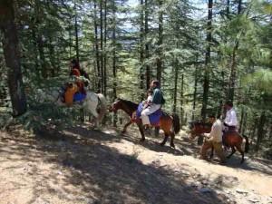 Horse ride at Naldehra