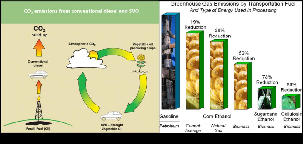 biofuels energy