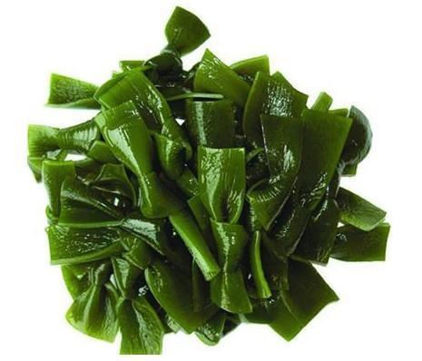 http://blog.zenmed.com/wp-content/uploads/2012/06/8556sea-kelp.jpg