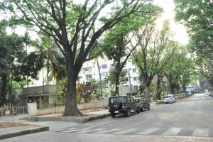 Jayanagar-Locality-0-Jayanagar-Bangalore
