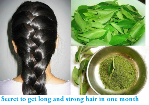 Benefits-of-Curry-Leaves-For-Hair-Growth