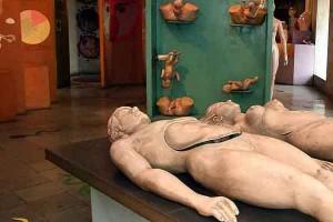 Antarang-Museum-of-Sexual-Health-Information11
