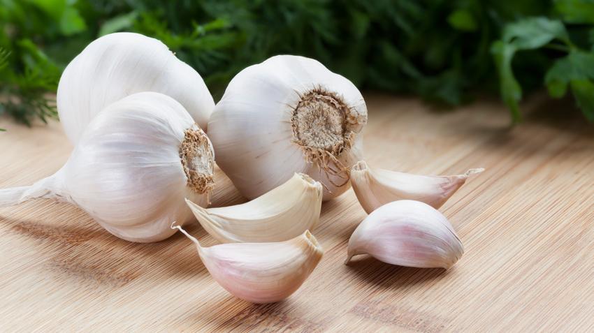 Garlic-images