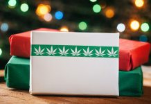 Shopping for Christmas Gifts For the Cannabis User in Your Life? Consider These 5 Suggestions