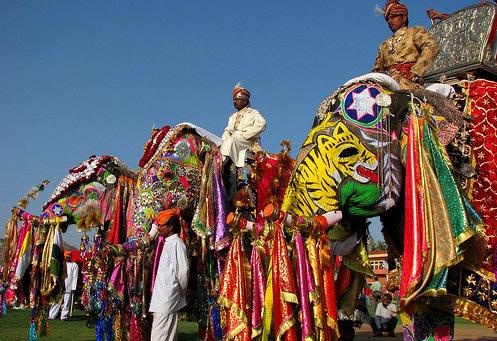 Jaipur Holi and Elephants